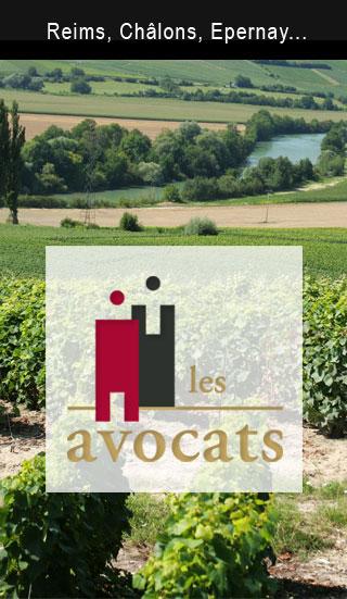 Contactez Laura Buisson Avocat à Reims